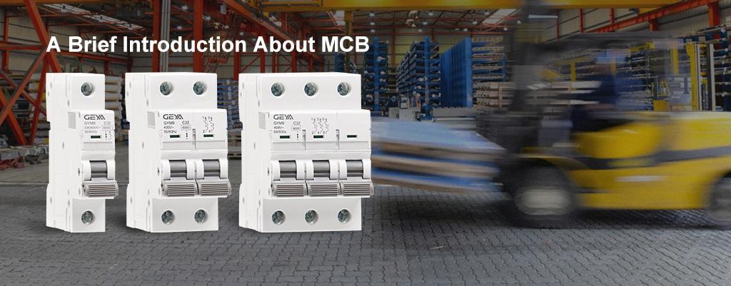 MCB BANNER2